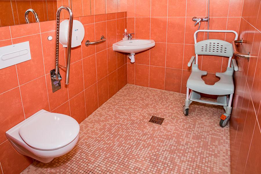 residencia-la-palmera-instalaciones-habitaciones-bano-adaptado
